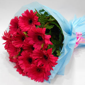 Order Serene Beauty  A bunch of Pink Gerbera flowers online