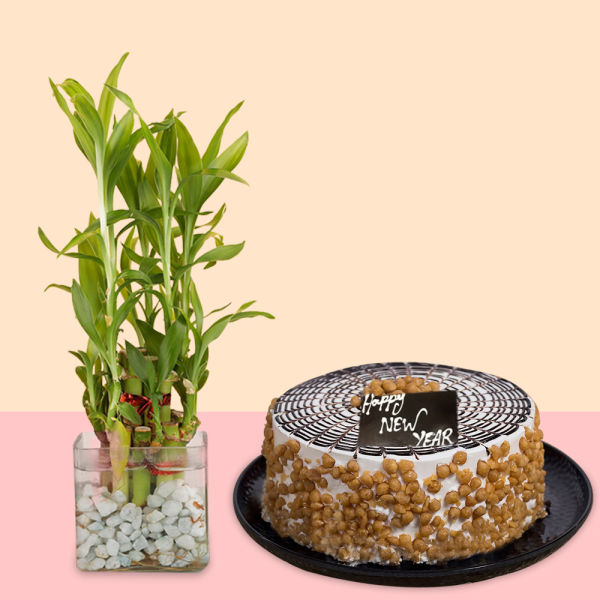 Buy Butterscotch Cake With Bamboo