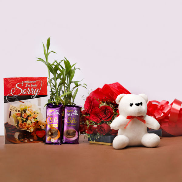 Buy Express Sorry with Gift