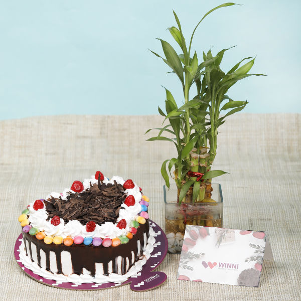 Buy Black Forest Gem Heart Shape Cake With Bamboo