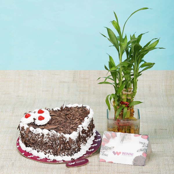 Buy Black Forest Heart Shape Cake With Bamboo
