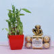 Buy Bamboo Plant With ChocoGanesha Combo